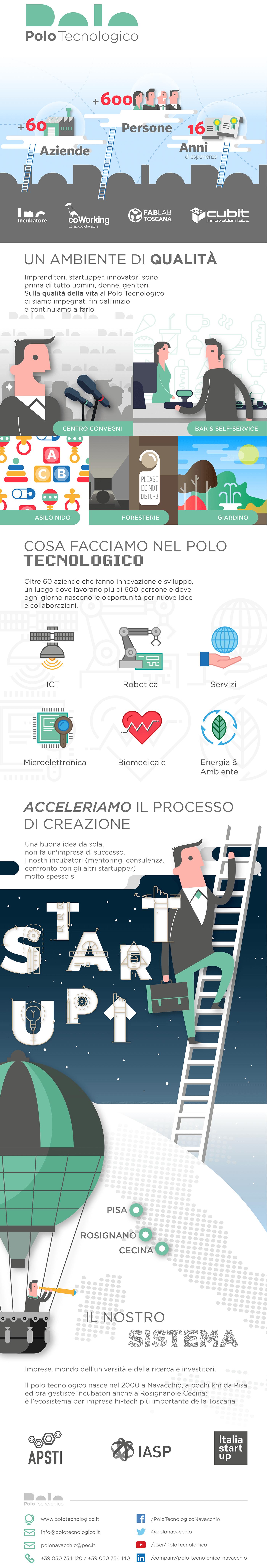 polo_infografica_rev